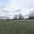 Pine Ridge Farm