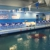 United States Swim Academy