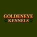 Goldeneye Kennels