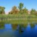Floyd Lamb Park At Tule Springs