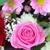 Ansted-Schuster Florist