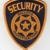Bullock Investigations (Security Division)