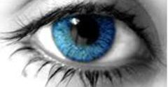 Preferred Eye Care - Houston, TX