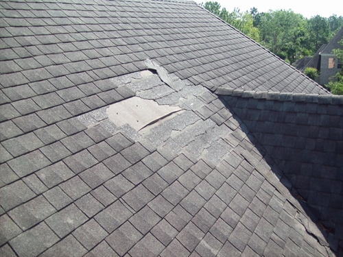 Roof damage usually stems from missing shingles and leaks.