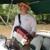 Zydeco Bayou Adventures (Swamp Tours)