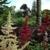 Clifton Garden Cabin