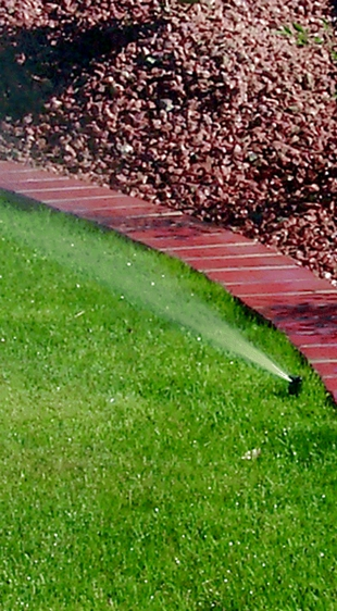 water-irrigation-lawn