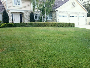 Softscaping and Lawn Care in Torrance