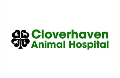 Cloverhaven Animal Hospital - Tupelo, MS