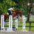 Fox-Bell Farm & Training