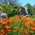 Greer Bill Landscaping