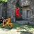 Wushu Taekwon-Do Academy