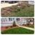 Scherf's Lawn Service