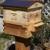 The Honey Tree Beekeeping Service