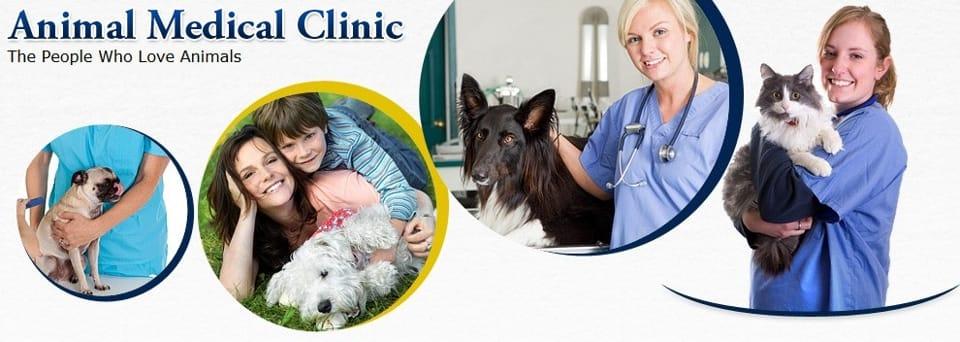 AnimalMedicalClinicLittleRock