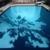 Great White Pool & Spas
