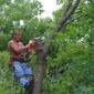 Green Mountaineers Tree Service - South Burlington, VT