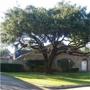 Tree  Musketeers LLC