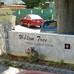 Willow Tree Nursing Center