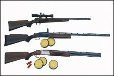 Gun Range Davison