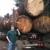 Bill Tufts Logging