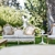 Dogwood Party Rentals