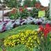 Four Seasons Lawn Care Maintenance Corp.