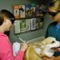 Bel-Aire Veterinary Hospital Inc - Greensboro, NC