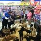 Choice Pet Supply - Fairfield, CT