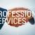 Mckenzie Professional Consulting services