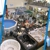 Blue Dolphin Pools & Spas Inc - A BioGuard Platinum Dealer