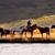 Colorado Photo Workshops