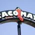 Taco Mayo