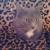 Feline Wishes & Cavier Dreams