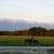 Feather Mountain Ranch
