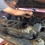 Auto Repair Specialist