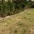 Colonial Reserve at Las Colinas