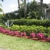 Gardens of the Treasure Coast