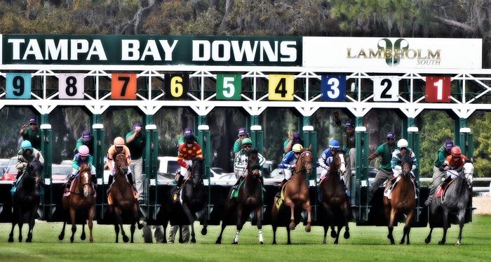 Tampa Bay Downs Race Start