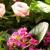 Parkers Flowers-Punta Gorda