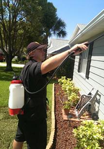 pest-spray