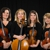 Carolina Royal Strings or Wedding Strings of Charlotte