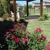 Armstrong Landscape Management, LLC