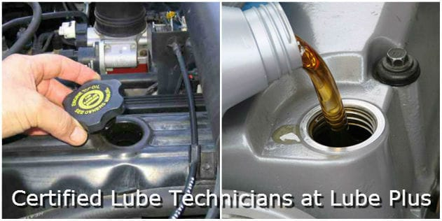Certified Lube Technicians at Lube Plus, Fresno, CA