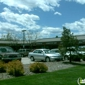 Central Bark Doggy Day Care - Littleton, CO