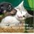 Aaron Animal Clinic