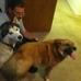 New Hope Animal Rescue Inc