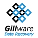 Gillware Inc. Data Recovery