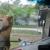 SuperGlass Windshield & Headlamp Repair