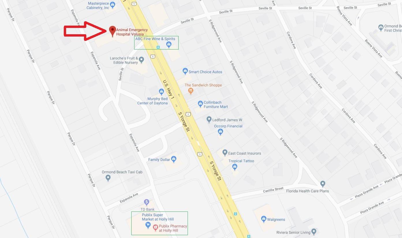 animal-hospital-volusia-location-map-area